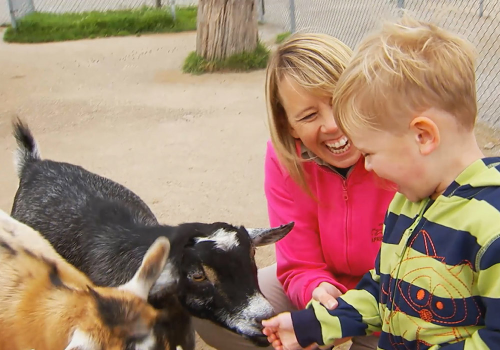 Mother and child having fun with goats in pet's corner